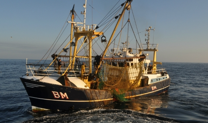 The uk commercial fishing industry west of morecambe for What is commercial fishing